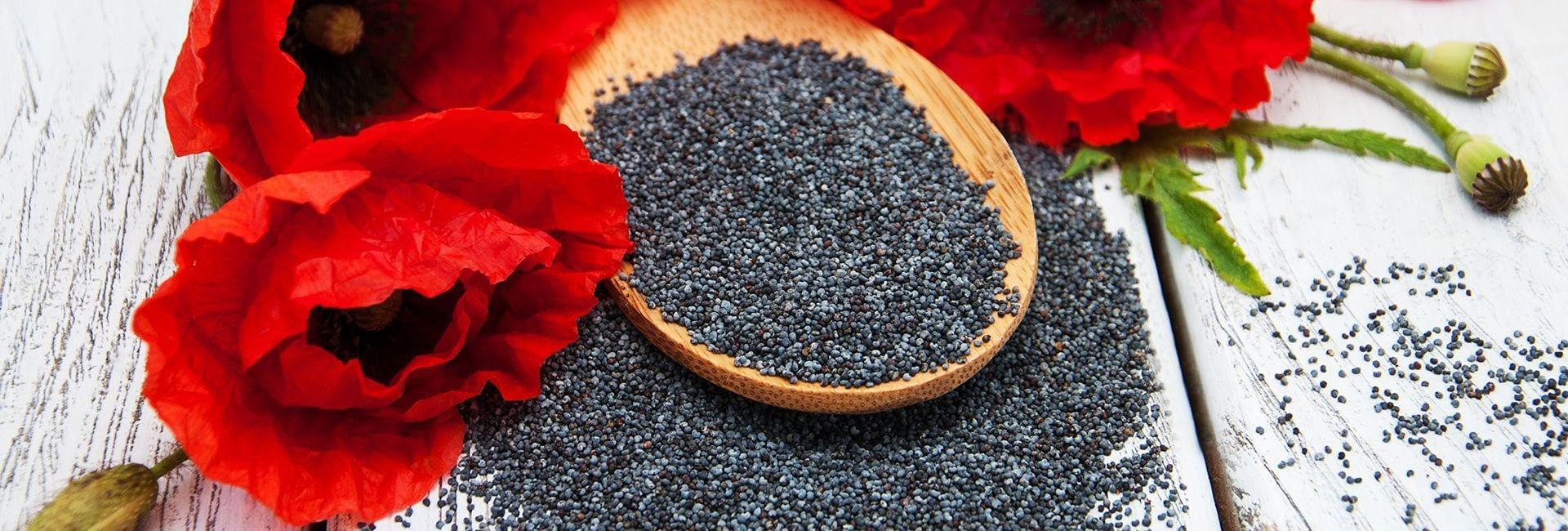 3 razones para usar semillas de amapola