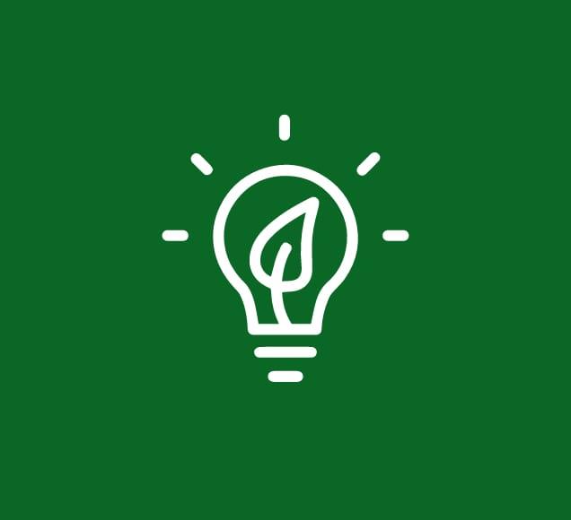 Ecocesta - Innovacion